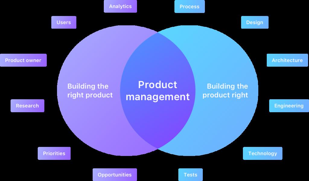 Entendendo as responsabilidades do gestor de produto